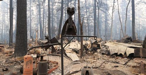 """美国:""""坎普""""山火造成的死亡人数升至48人"""