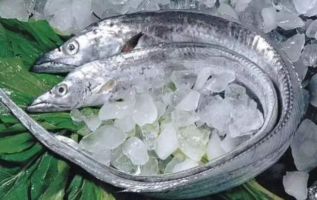 鲜带鱼清蒸,冻带鱼煎烧