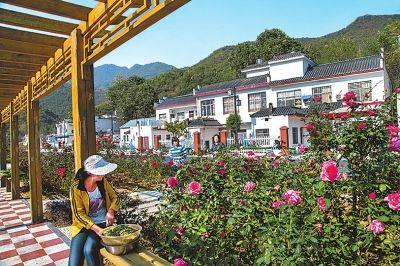 焦作博爱县全力实施帮扶建美丽乡村