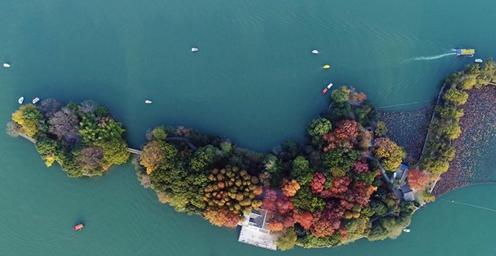 层林、翠湖相映成趣