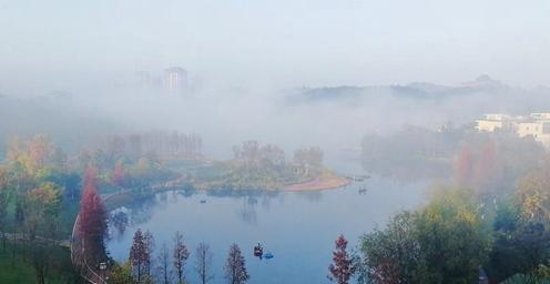 雾气、林木、湖水共绘美丽冬景
