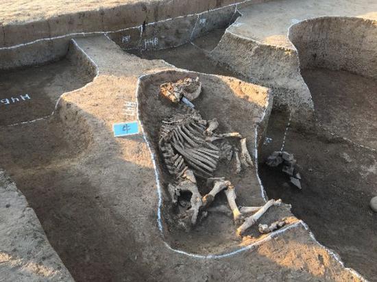 鹤壁辛村遗址首次发现铸铜及制骨作坊 卫国风貌有望重现