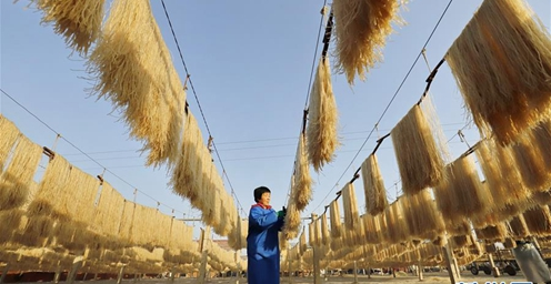 河北遵化:粉条加工助力农民增收