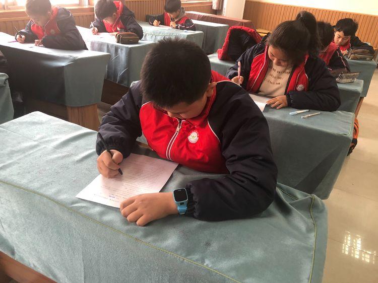 新城实验小学开展学宪法,讲宪法活动