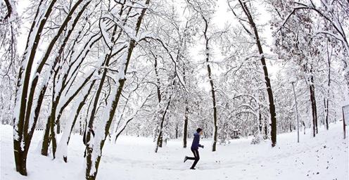塞尔维亚:雪中行