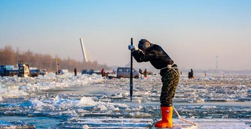 近千名工人松花江上忙采冰