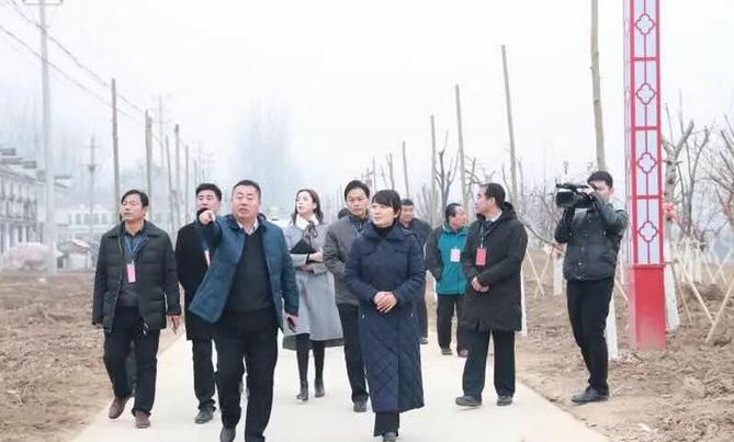 虞城县站集镇人大主席团开展异地视察活动
