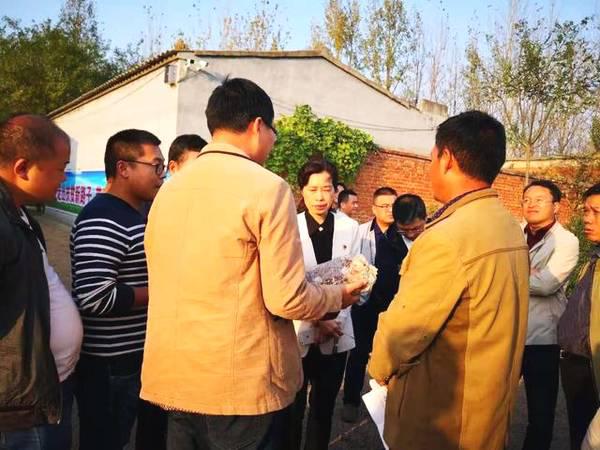 """""""三花""""走向脱贫路 遂平县文城乡发展特色农业产业化"""