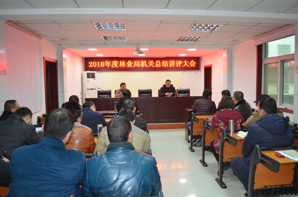 内乡县林业局组织召开机关总结讲评大会