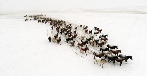 山丹马场迎来降雪天气 鸾鸟湖千里冰封