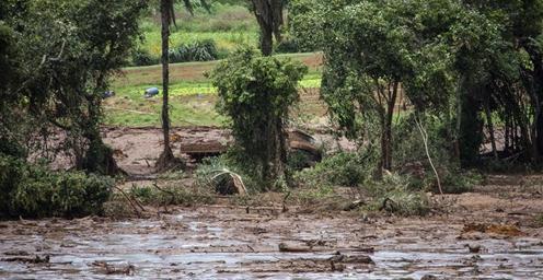 巴西矿坝溃坝事故易造成58人死亡