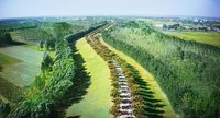 提速!到2022年 河南省省级森林城市数量达40个