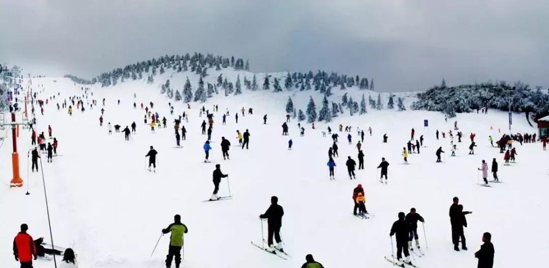 济源开启玩雪狂欢模式,优惠福利享不停!