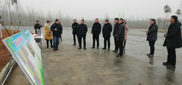 南阳市林业局督查内乡县冬春造林绿化和国储林建设工作