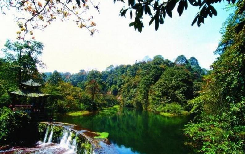 国家新增11处国家森林公园 河南金顶山在列