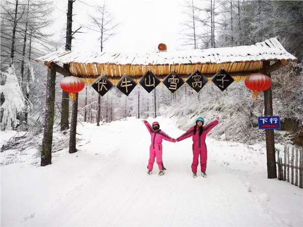 """""""河南锦鲤""""畅游伏牛山滑雪度假乐园 体验冰雪魅力"""