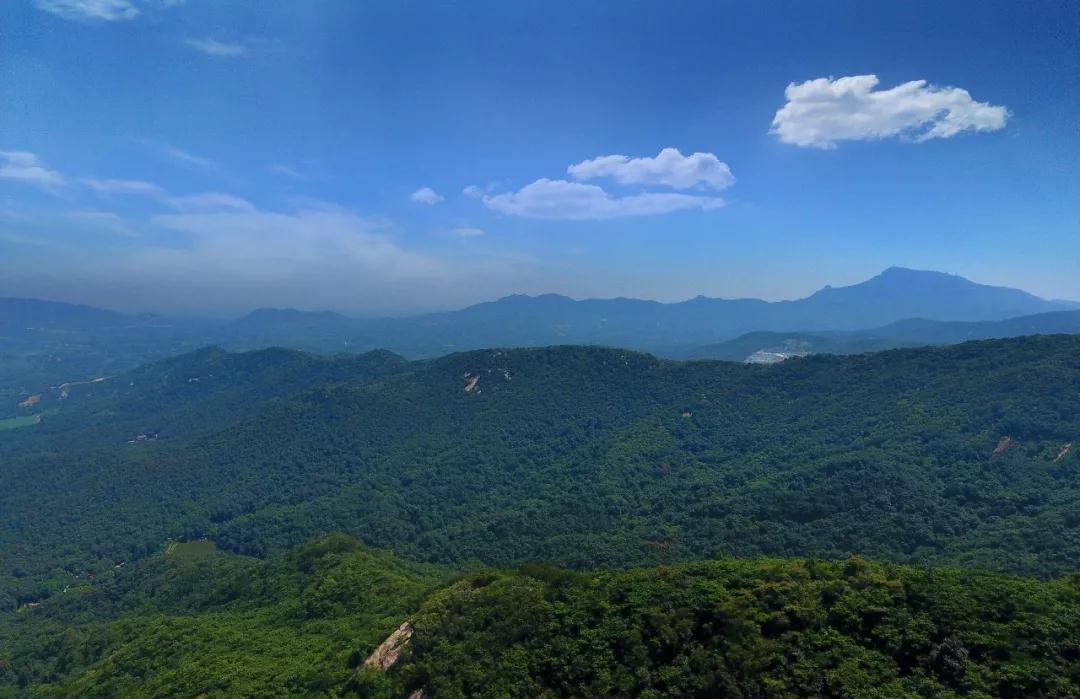 """河南省旅游景区再添""""国字号""""生态名片  驻马店金顶山入选国家森林公园"""
