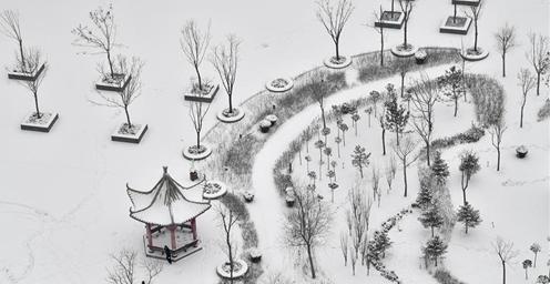宁夏南部山区迎来降雪天气