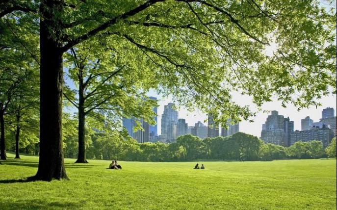 【热销红盘解读之生态篇】城央双园旁卫河畔,生态大境理想居所
