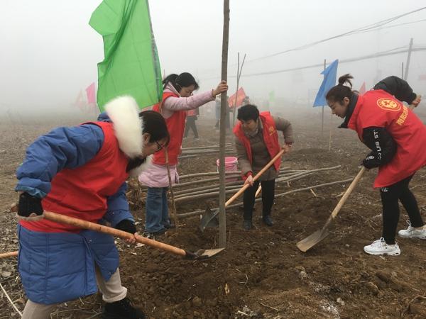 """喜迎""""三八节"""" 巾帼在行动——卧龙区法院积极参与义务植树活动"""
