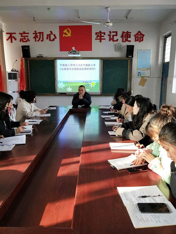 商丘市梁园区平原路小学集中学习《加强党对全面依法治国的领导》