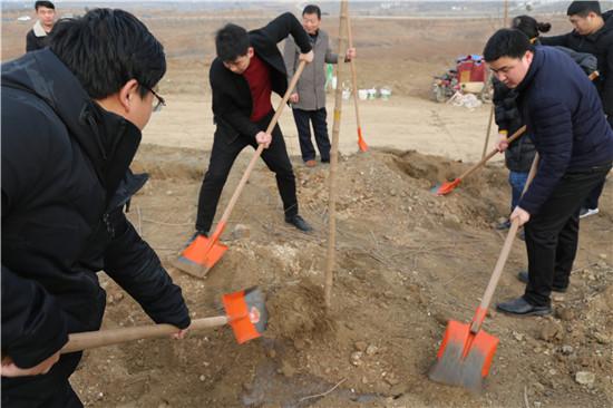 镇平县人民法院开展植树活动