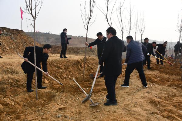 南召农商银行开展春季义务植树活动