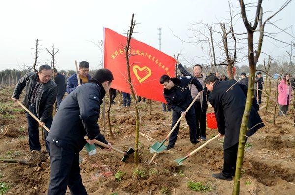 新野法院积极开展义务植树活动  播撒绿色种下希望