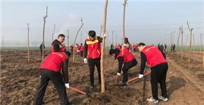 漯河市召陵区人民法院积极参加春季义务植树活动
