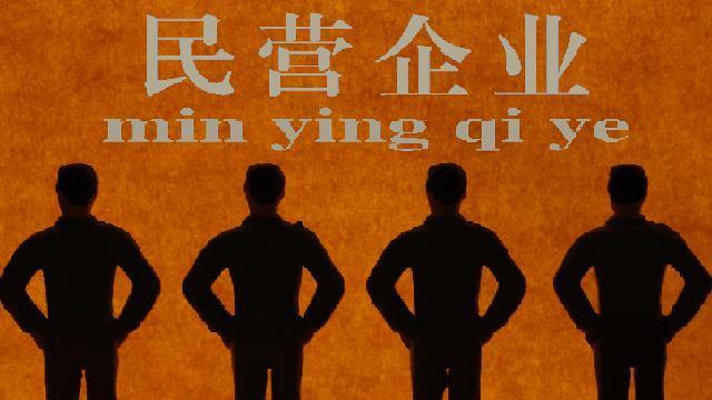 宜华集团刘绍喜代表  民企要聚焦实业迈向高质量发展