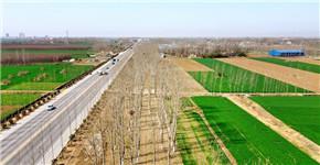南阳市卧龙区:大造林构筑城市生态屏障
