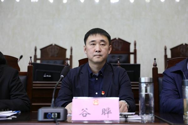 内乡法院召开2019年党风廉政建设暨工作会议