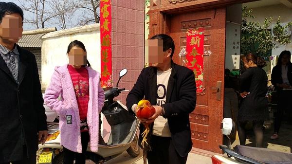 邓州市森林公安局救助国家二级保护动物红腹锦鸡