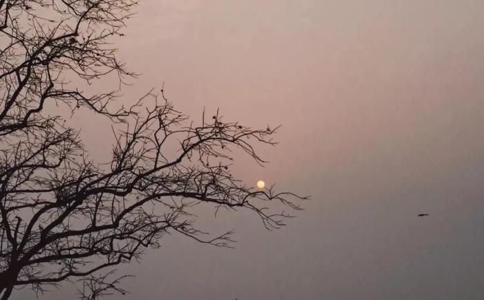 """""""美丽乡村""""系列(二):云端上的院子——太行艺术小镇"""