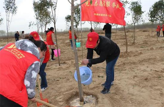郑州市兴达路街道:牵春风种绿意 志愿环保在行动