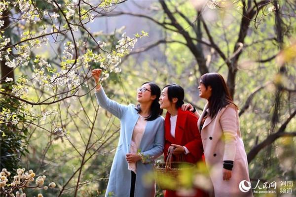 河南:世外桃园满春色 彩幡新意近人家