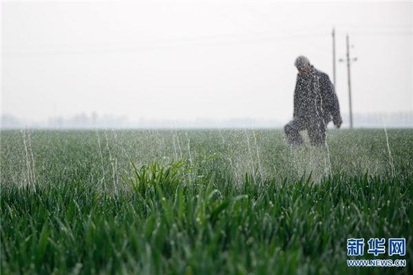 河南宝丰:春管春灌保丰收
