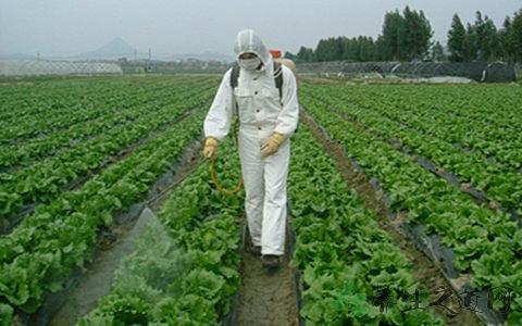 我国将对百万农民开展科学使用农药培训 推动科学安全用药