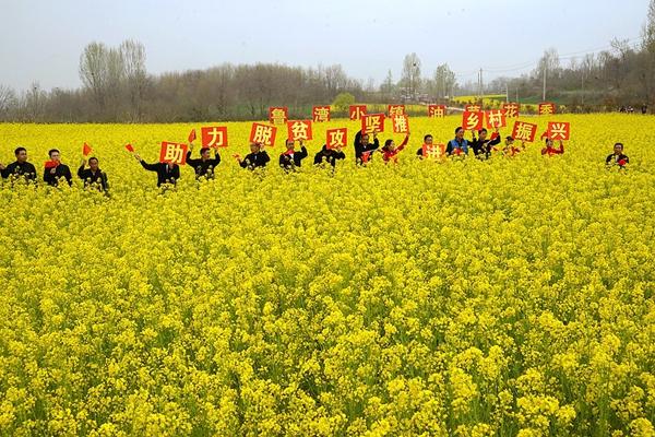 驻马店蚁蜂镇农民节暨鲁湾小镇首届油菜花文化季精彩纷呈