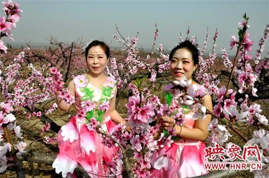 灵宝市故县镇:万亩桃花争芳吐艳 吸引游客畅游花海