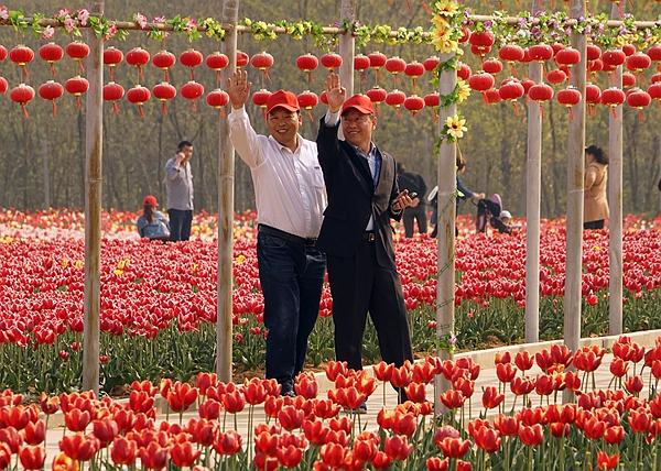 与游人一起闹春——20多名记者嵖岈山郁金香园游记