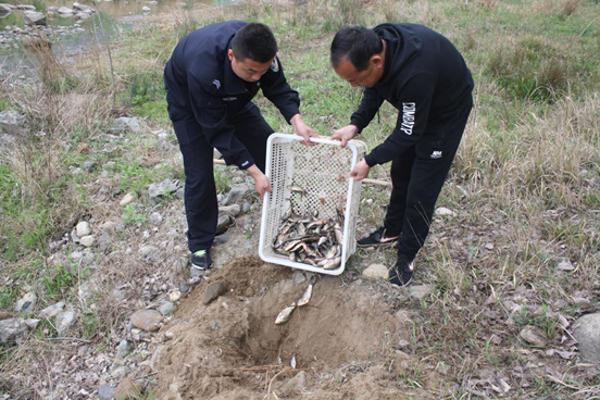内乡公安:七里坪派出所破获一起非法捕捞水产品案件