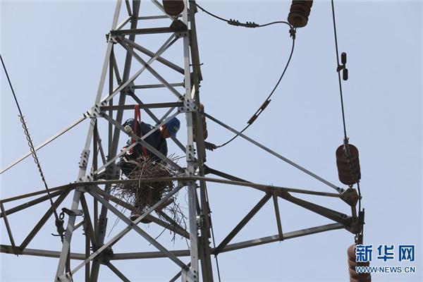 河南温县:线路检修助力乡村用电安全