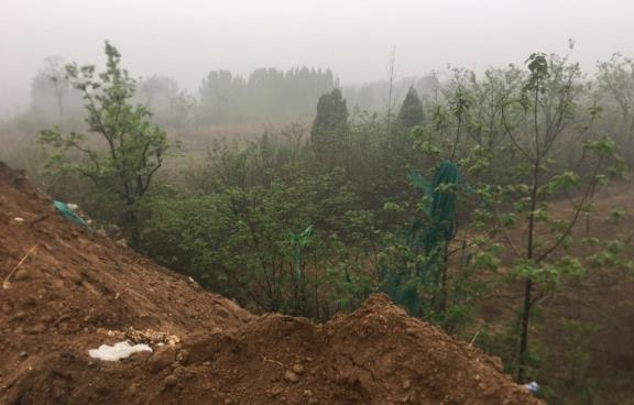 新密村民耕地被倒大量建筑垃圾 金元物流公司:正申请变更土地性质