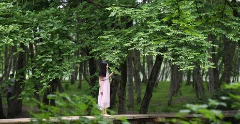 感受皖南古村落文化和自然风光